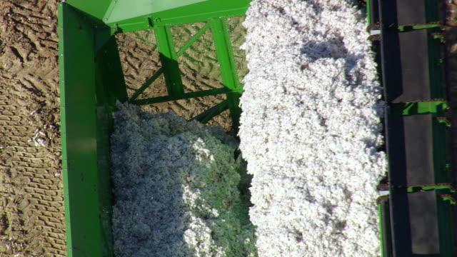 vídeos y material grabado en eventos de stock de ms aerial shot of cotton in rolly container / north carolina, united states - cotton