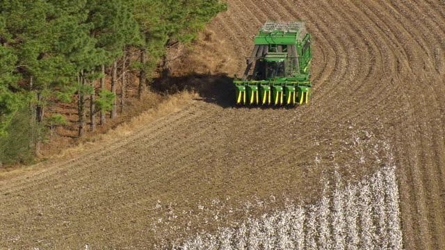 vídeos y material grabado en eventos de stock de ms shot of cotton stripper in cotton field / north carolina, united states - cotton