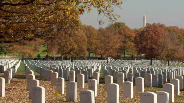 ms shot of countless white tombstones frame by autumn trees at arlington national cemetery with washington monument / washington, district of columbia, united states - cimitero nazionale di arlington video stock e b–roll