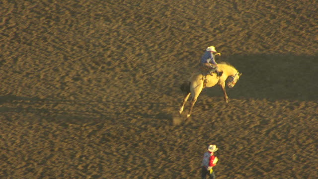MS AERIAL TS Shot of cowboy on bucking bronco in arena at Montana State Fair / Montana, United States