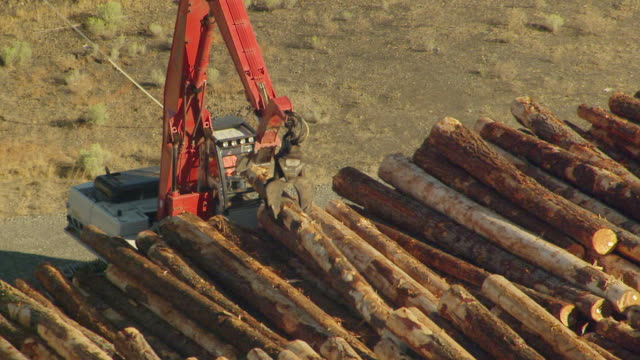 ms aerial zo shot of crane moving one log in large stack at millyard / washington, united states - timber yard stock videos & royalty-free footage