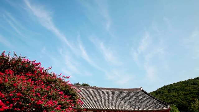 Shot of Crepe Myrtle Tree and Roof of Seonunsa Temple