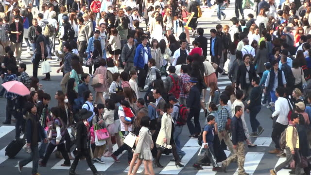 ms t/l shot of crowds and traffic on hachiko crossing daytime / shibuya, tokyo, japan  - pedestrian crossing stock videos & royalty-free footage
