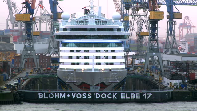 ms shot of cruise ship in blohm voss ship yard / hamburg, germany  - mittelgroße tiergruppe stock-videos und b-roll-filmmaterial