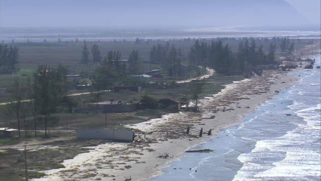 WS AERIAL Shot of cutted trees at beach / Sao Paulo, Brazil