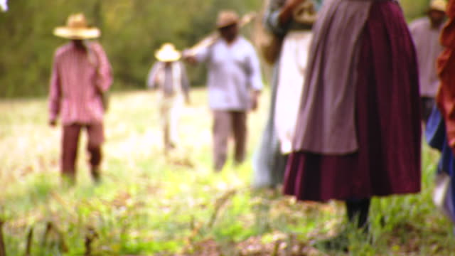 MS TU TD Shot of details group of slaves walk through field / Culpeper, Virginia, United States