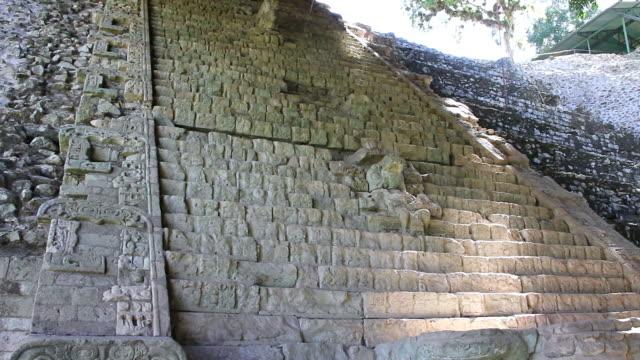 MS Shot of Details of copan surrounding by trees / Copan, Honduras
