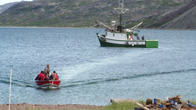 stockvideo's en b-roll-footage met ms shot of dog greets small motor boat with people arriving near dock and fishing boat / torgat mtns, labrador, canada - wiese