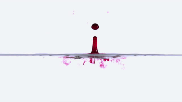 cu slo mo shot of drop of red ink falling into water against white background / calvados, normandy, france - インク点の映像素材/bロール