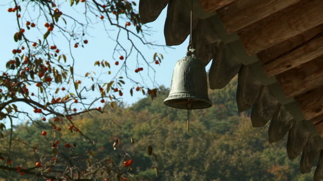 shot of eaves and wind-bell at bulgapsa temple - eaves stock videos and b-roll footage