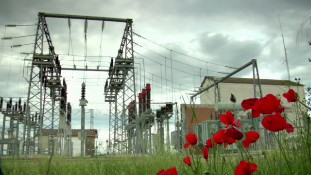 MS Shot of electrical substation from floor with poppies / Azutan, Madrid, Spain