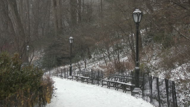 Shot of empty park benches and street lights along a trail in Central Park, New York City on a snowy winter day.