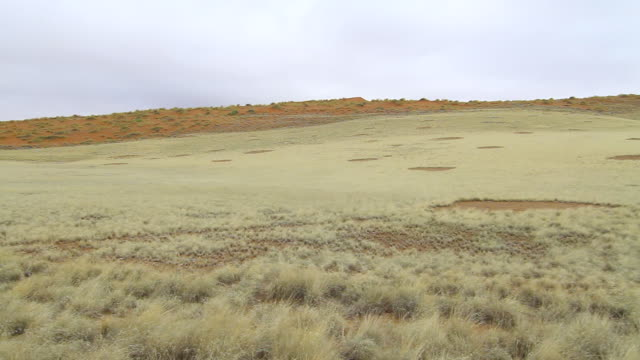 ws pan shot of fairy circles in grassy field / sossusvlei, hardap, namibi - wiese stock videos & royalty-free footage