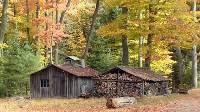 WS Shot of Fallow wooden house in autumn / Combermere, Ontario, Canada