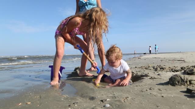 ms shot of family playing on beach / st simon's island, georgia, united states - 男の赤ちゃん点の映像素材/bロール