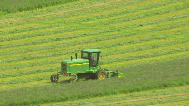 vídeos de stock e filmes b-roll de ms aerial ts shot of farmer in tractor cutting alfalfa harvest / livingston, montana, united states - trator