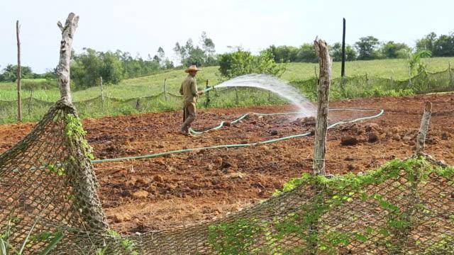 ms shot of farmer watering field / cuba  - 吹きかける点の映像素材/bロール