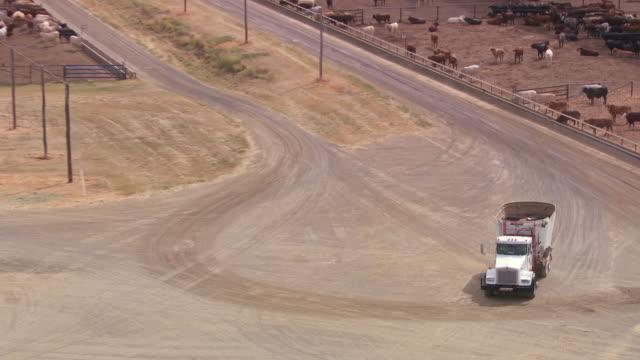 vidéos et rushes de ms ts zo shot of feed truck roams streets / roma, queensland, australia - véhicule utilitaire léger