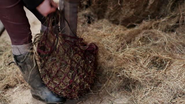 CU TU Shot of filling horse hay bags / Helland, Bodmin, Cornwall, United Kingdom