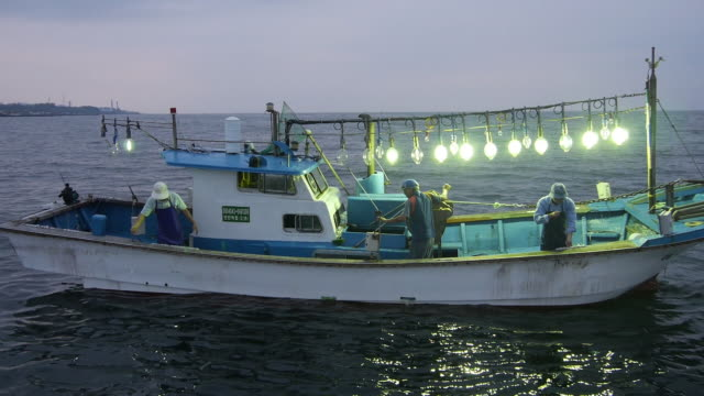shot of fishermans catching of mitra squid in a fishing boat on the sea - pescatore video stock e b–roll