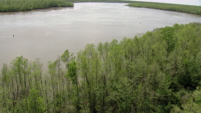 ms aerial shot of floodplain and atchafalaya river / louisiana, united states - fluss red river stock-videos und b-roll-filmmaterial