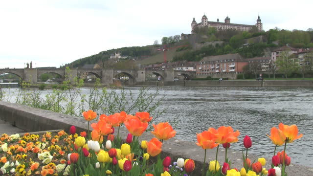 ws shot of flower infront of river main with fortress marienberg / wurzburg, bavaria, germany - wurzburg stock videos and b-roll footage