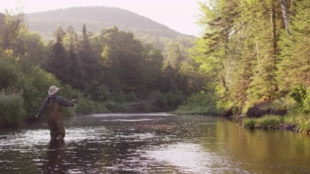 MS Shot of Flyfishing on Long Pond River in Northern / Maine, United States