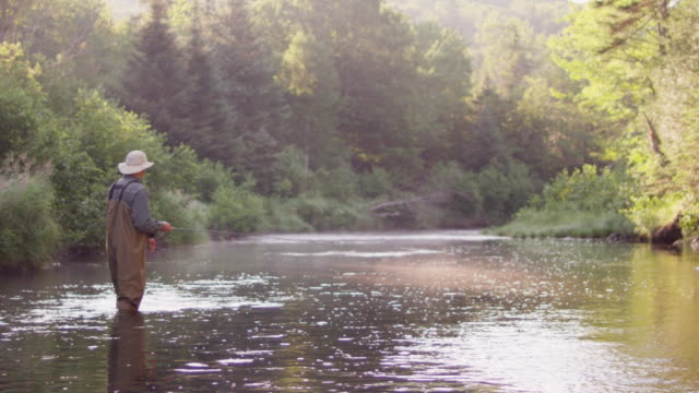 ms slo mo shot of flyfishing on long pond river in northern / maine, united states - maine stock videos & royalty-free footage