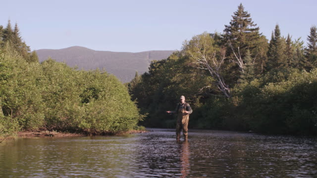 ms shot of flyfishing on long pond river in northern / maine, united states - pond stock videos & royalty-free footage