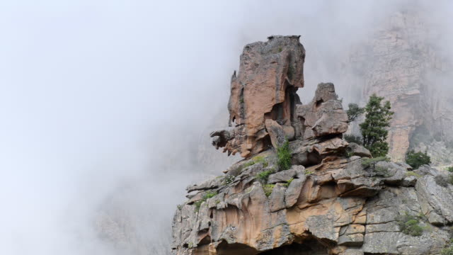 ms shot of fog moves over fantastic rocks of calanche of piana, unesco world heritage site / porto, corsica, france - igneous stock videos & royalty-free footage
