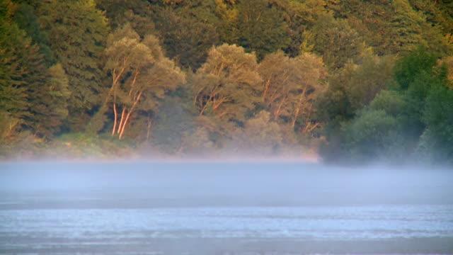 ms shot of fog moving over river saar / saarburg, rhineland palatinate, germany - saarburg stock-videos und b-roll-filmmaterial