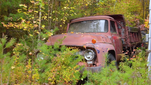 MS Shot of foliage old ancient pick up truck in fall leaves in Northern New England fall foliage leaf peeping October / Bethel, Maine, United States