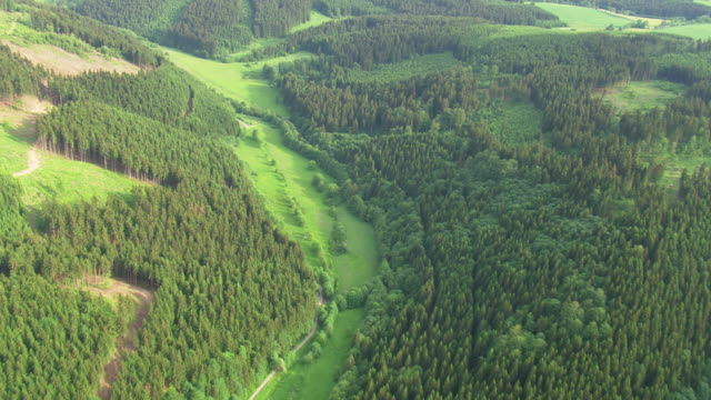 MS AERIAL Shot of forest and city of border with farmland / Germany