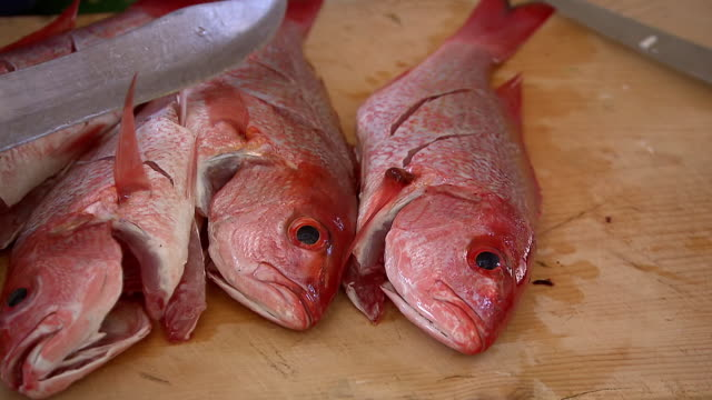 ms shot of four whole vermilion snapper being scored in preparation to be cooked / tulum, quintana roo, mexico - five objects stock videos & royalty-free footage