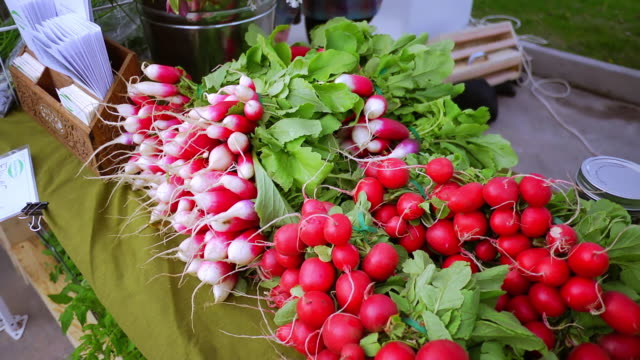 vidéos et rushes de ms slo mo shot of fresh produce (radishes) at farmer's market to flowers / chatham, michigan, united states - radis