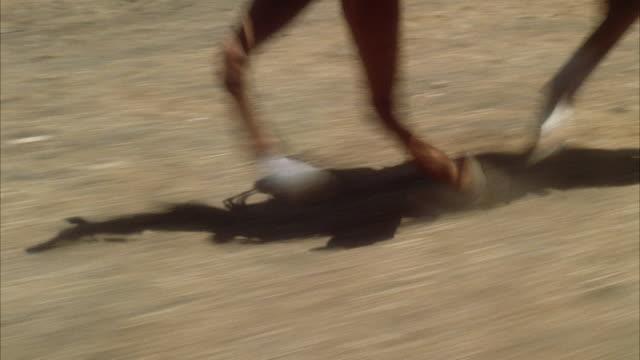 cu ts shot of galloping horse legs - galoppera bildbanksvideor och videomaterial från bakom kulisserna