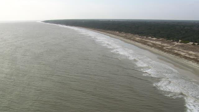 WS AERIAL Shot of Georgia Coast and Blackbeard Island / Georgia, United States