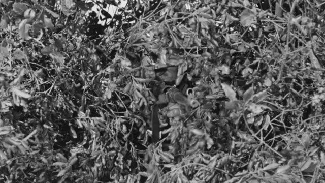 CU Shot of German soldier in bush firing rifle