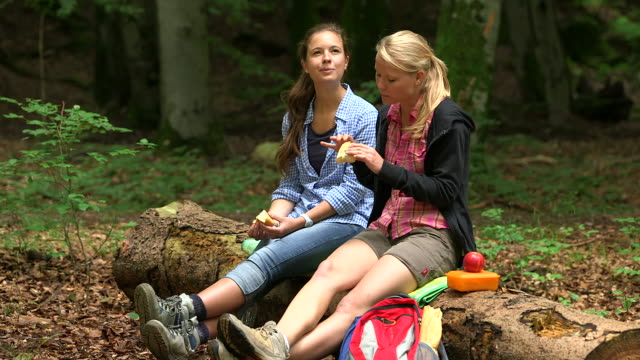 ms shot of girls having rest on a stump in wood land / kastel staadt, rhineland palatinate, germany  - rucksack stock-videos und b-roll-filmmaterial