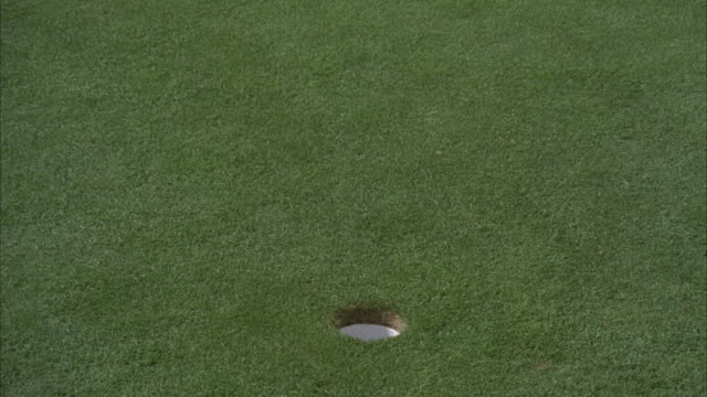 MS Shot of Golf ball going into cup on green