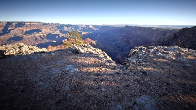 ms pov shot of grand canyon national park / grand canyon national park, arizona, united states - grand canyon national park stock videos & royalty-free footage