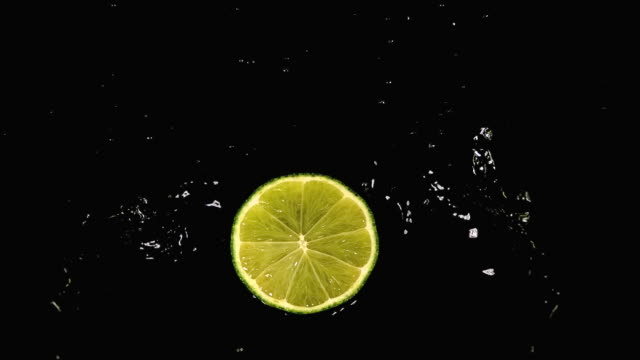 CU SLO MO Shot of Green Lemon, citrus aurantifolia, Slice falling on Water and splashing against black Background / Calvados, Normandy, France