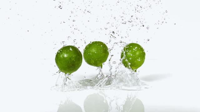 vídeos de stock, filmes e b-roll de cu slo mo shot of green lemons, citrus aurantifolia, fruits falling on water and splashing against white background / calvados, normandy, france - moving down