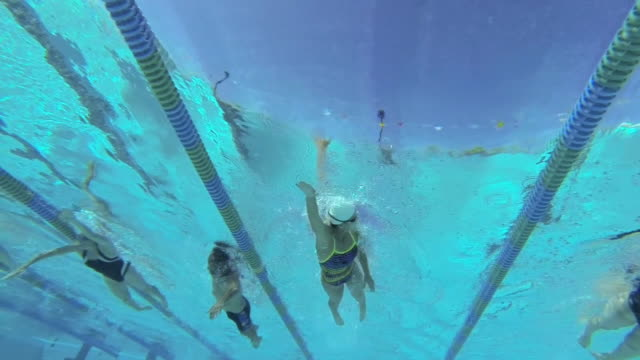 MS TS SLO MO Shot of group of freestyle swimmers in lanes in underwater / Davis, California, United States
