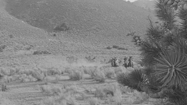 ws ts shot of group of horseback riders on trail - medium group of animals stock videos & royalty-free footage