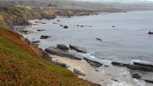 MS Shot of half Moon Bay / Pacific Coast Highway, California, United States