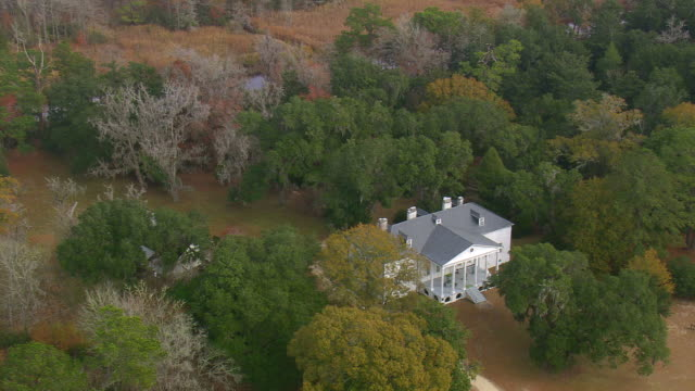 ms aerial zo shot of hampton plantation state park surrounded by wooded area / south carolina, united states - georgia stati uniti meridionali video stock e b–roll