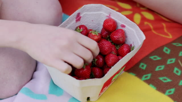 """CU Shot of hand picking strawberry out of paper box at picnic / Berlin, Germany"""