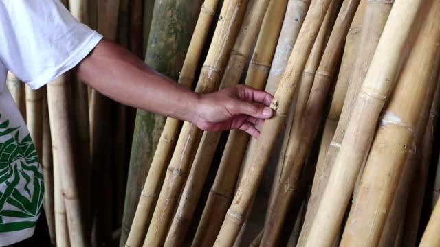vídeos de stock e filmes b-roll de cu shot of hand showing cut bamboos / ubud, bali, indonesia - bambu material