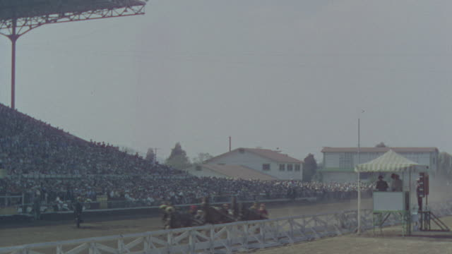 MS Shot of harness race and large audience fills stands